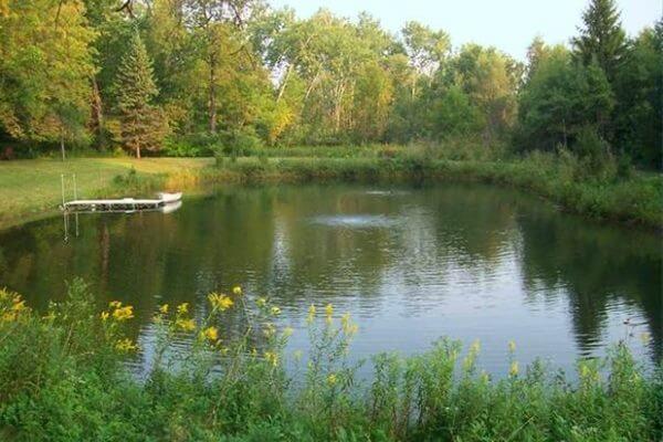 Cómo es un estanque natural