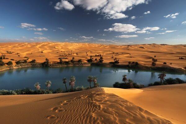 Qué es un oasis