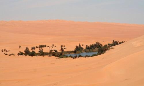 ¿Qué son los Oasis y cómo se forman? - Oasis en el desierto del Sahara
