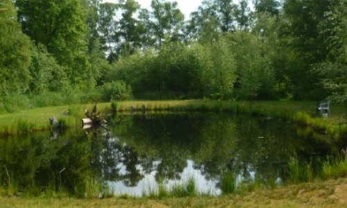 Qué es un estanque natural, definición