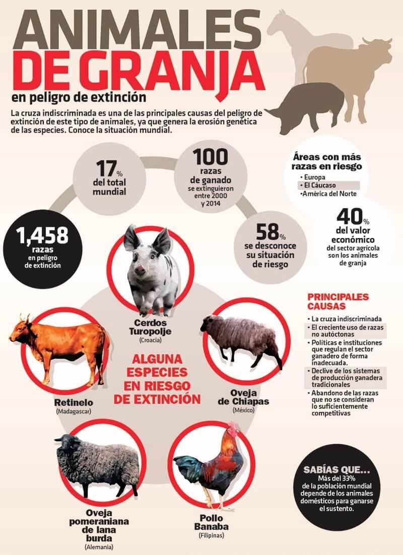 tipos de animales de granja