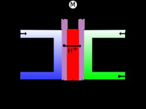 funcionamiento de una célula de combustible
