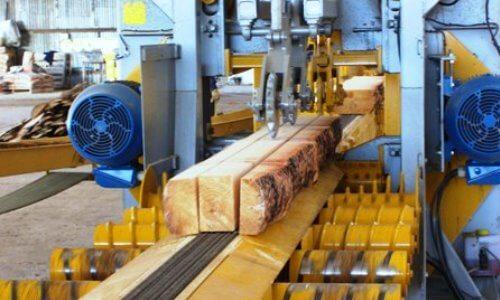 como-se-obtiene-la-madera
