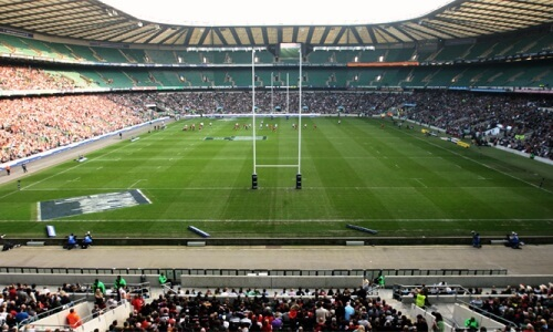 estudio-rugby