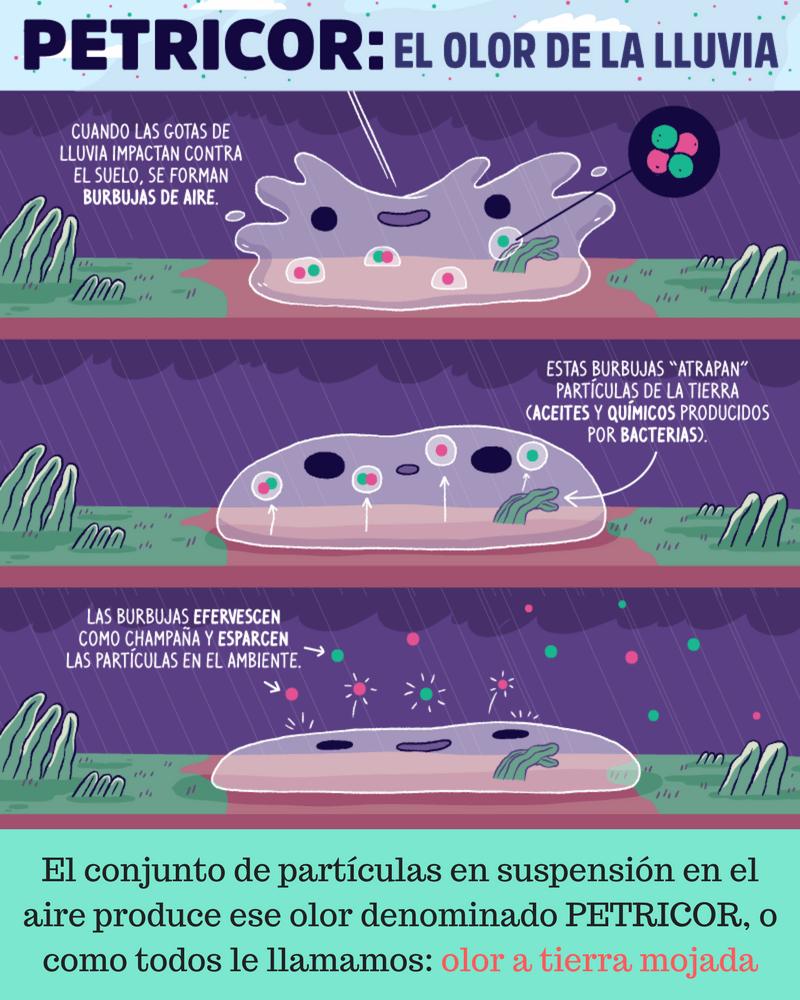 infografía por qué llueve