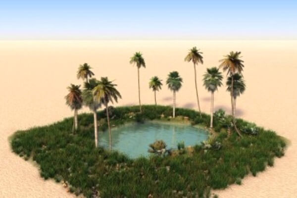 formas de vida en los oasis