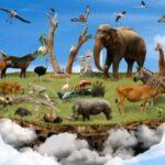 animales terrestres características
