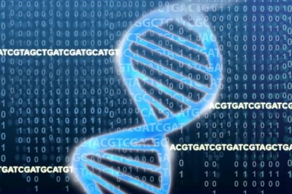 identificación genética mediante el ADN