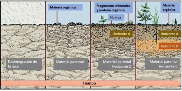 ¿Cómo se forma el terreno?