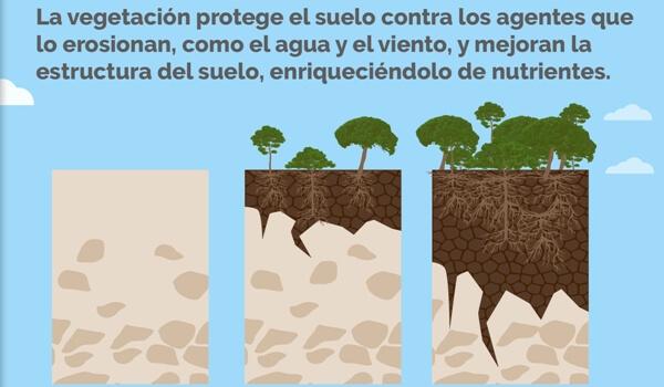 Importancia de la conservación del terreno