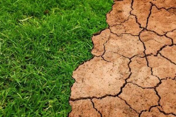 Qué es el suelo geología